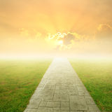 Concrete road in Grass fields and Sunset Royalty Free Stock Photos