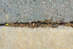 Concrete road repair by asphalt Stock Photos