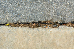 Concrete road repair by asphalt Royalty Free Stock Photo