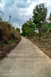 Concrete road with tropical forest. And cloudy background Royalty Free Stock Images