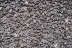 Concrete, rough surface background Stock Photo