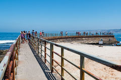 Concrete Sea Wall Built in 1931 in La Jolla, California Royalty Free Stock Image