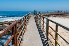Concrete Sea Wall with Railing at La Jolla Children`s Pool Stock Photos