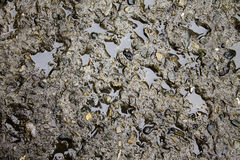Concrete slab and water Royalty Free Stock Images