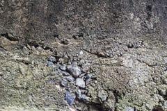 Concrete slechte mengeling Stock Foto