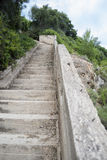 Concrete stair in nature Royalty Free Stock Photos