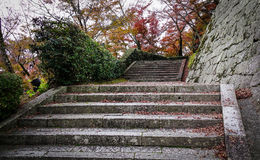 Concrete stair with stone wall at temple Royalty Free Stock Image
