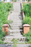Concrete staircase surrounded by greenery Stock Photo