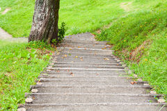 Concrete stairs to park Royalty Free Stock Photo