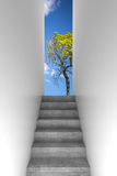 Concrete stairway goes up, abstract way. Concrete stairway goes up, abstract empty white interior background with green tree and blue cloudy sky outside, front royalty free illustration