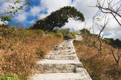 Concrete stairways Stock Photography
