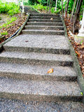 Concrete steps. As part of garden designation Royalty Free Stock Images
