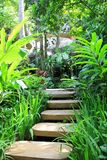 Concrete Steps In The Garden Royalty Free Stock Photo