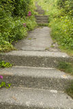 Concrete steps and overgrown uphill path. Stock Photo