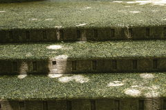 Concrete steps royalty free stock image