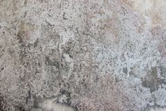 Concrete structure texture seamless wall background. walls consi Stock Photos