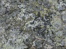 Concrete surface. Abstract generated obsolete weathered aged rough cement concrete background Stock Photo