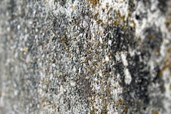 Concrete surface. Old rough concrete surface wiew in perspective Royalty Free Stock Photos