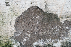 The concrete surface Stock Images
