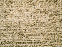 Concrete Texture. Close up of grungy concrete Royalty Free Stock Photography