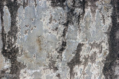 Concrete Texture. Close up of old concrete wall Stock Photos