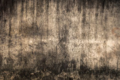 Concrete texture. The abstract background from the concrete texture Royalty Free Stock Images