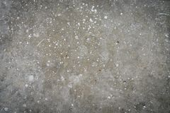 Concrete texture and painting white. Abstract background of real concrete texture and painting white dot color Stock Photography