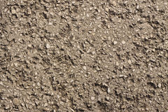 Concrete texture with small stones Stock Images
