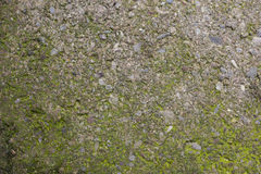 Concrete Textures Stock Photo