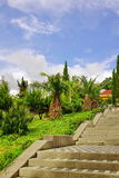 Concrete Tiled Upward Staircase In Ornamental Tropical Garden. S Stock Photography