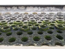 Concrete verdedigingszeedijk op een zandig strand die zeewier op het vloedteken en de geprefabriceerde hexagonale bouw tonen Stock Foto's