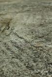 Concrete vloer stock foto's