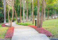 Concrete walk way in the garden Royalty Free Stock Images