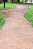 Concrete walk way surrounded by green grasses Royalty Free Stock Photos