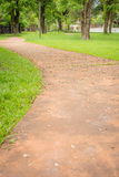 Concrete walk way surrounded by green grasses Royalty Free Stock Images