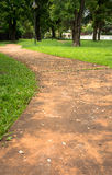 Concrete walk way surrounded by green grasses Royalty Free Stock Image