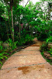 Concrete walkway into the garden and resort Royalty Free Stock Photo