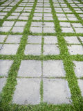 Concrete walkway. In the park on green gras Stock Image