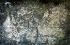 Concrete wall. Old cracked concrete wall with moss growing on it Stock Photo