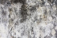 Concrete wall. Old damaged concrete wall close up Stock Image