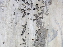 Concrete wall Royalty Free Stock Photos