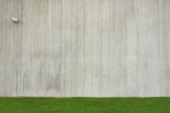 Concrete wall background with green grass Stock Photo