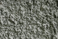 Concrete wall background texture. Abstract fungus Royalty Free Stock Images