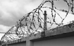 Concrete wall with barbed wire on fence Royalty Free Stock Photo