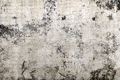 Concrete wall in a grunge style in the background Stock Image