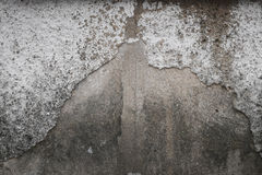 Concrete wall with grunge texture and moss green algae , texture Stock Images