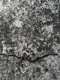 Concrete wall. Image includes a effect the black and white tones. Cement floor. texture Royalty Free Stock Photo