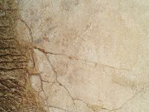 Concrete wall. Image includes a effect the black and white tones. Cement floor. texture Royalty Free Stock Photography