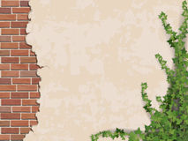 Concrete wall ivy and brick. Ivy on weathered wall background with brick masonry.  Vector realistic illustration Royalty Free Stock Photos