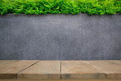 Concrete wall or marble wall and wooden floor with ornamental plants or ivy or garden tree Stock Images